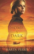 Home by Dark image